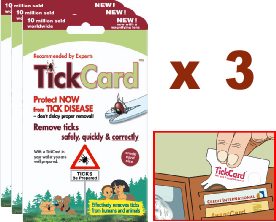 Tick Card 3 Pack